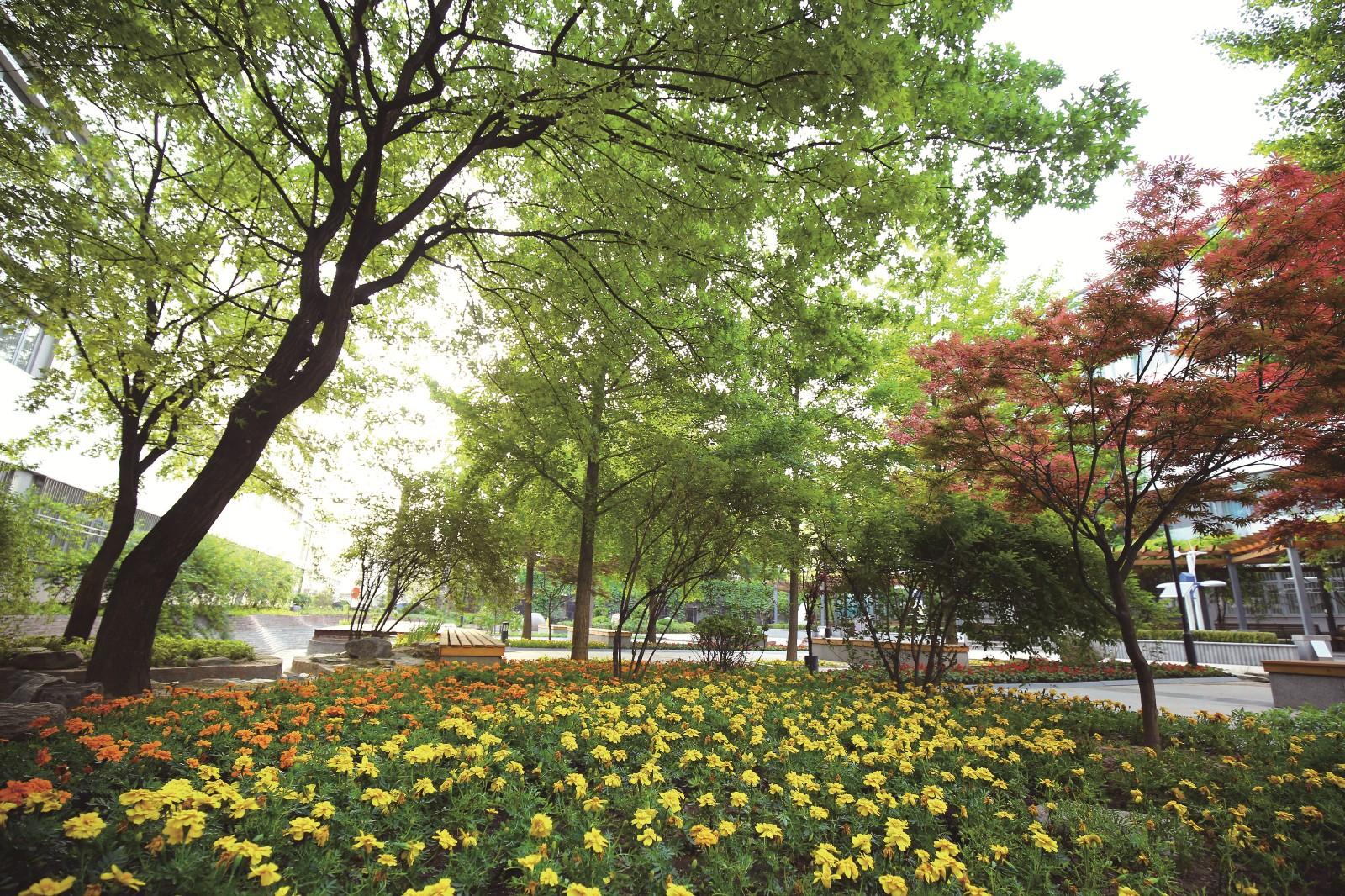 中心花园.jpg