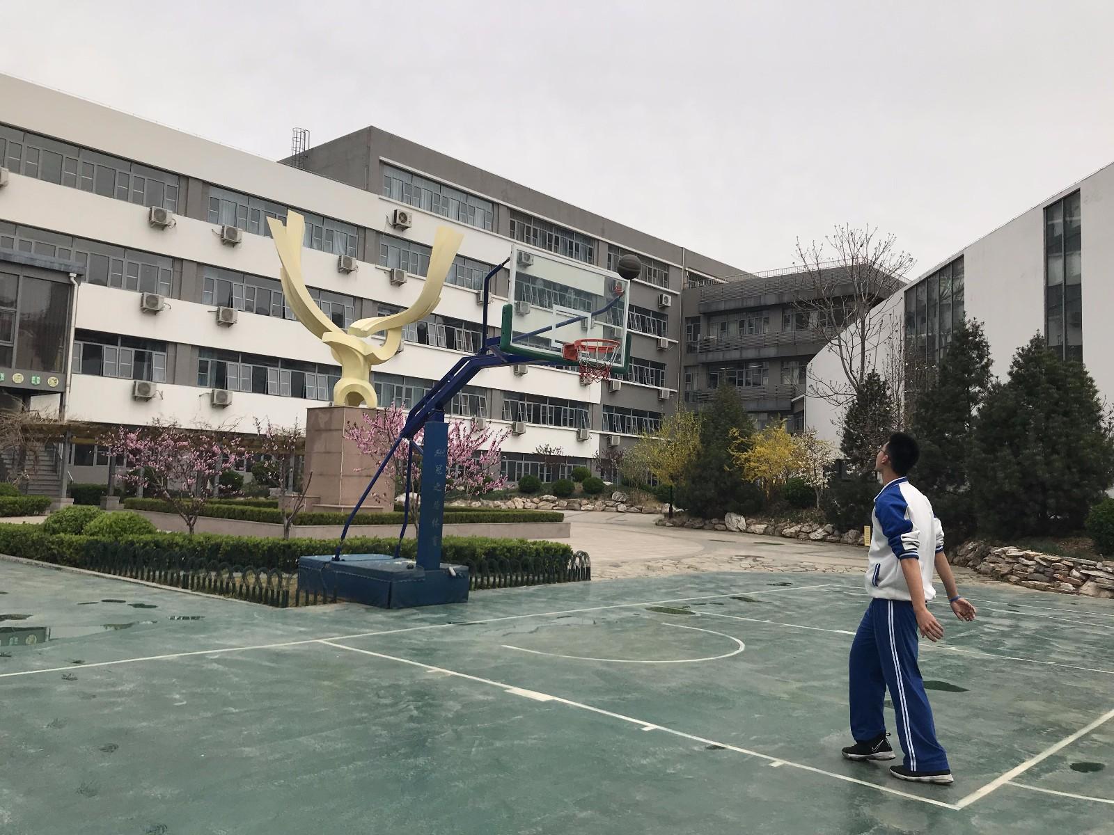 冯亚芹《腾飞的篮球》.jpg