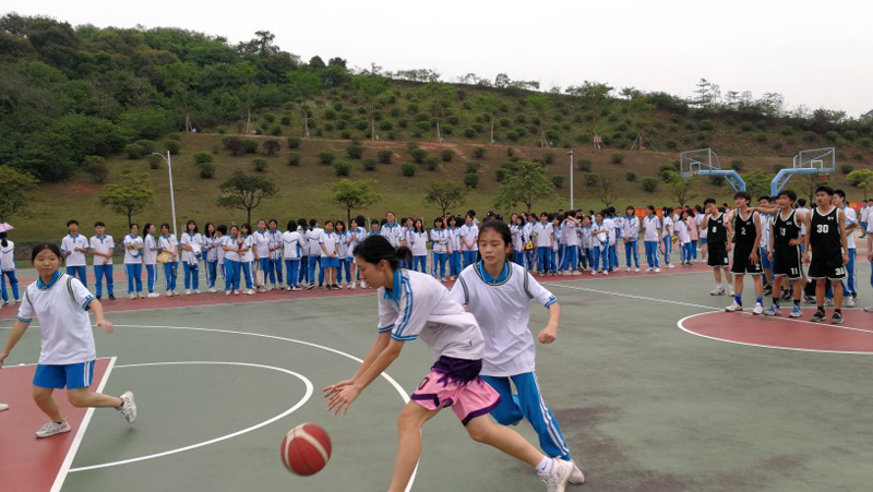 篮球女将.jpg