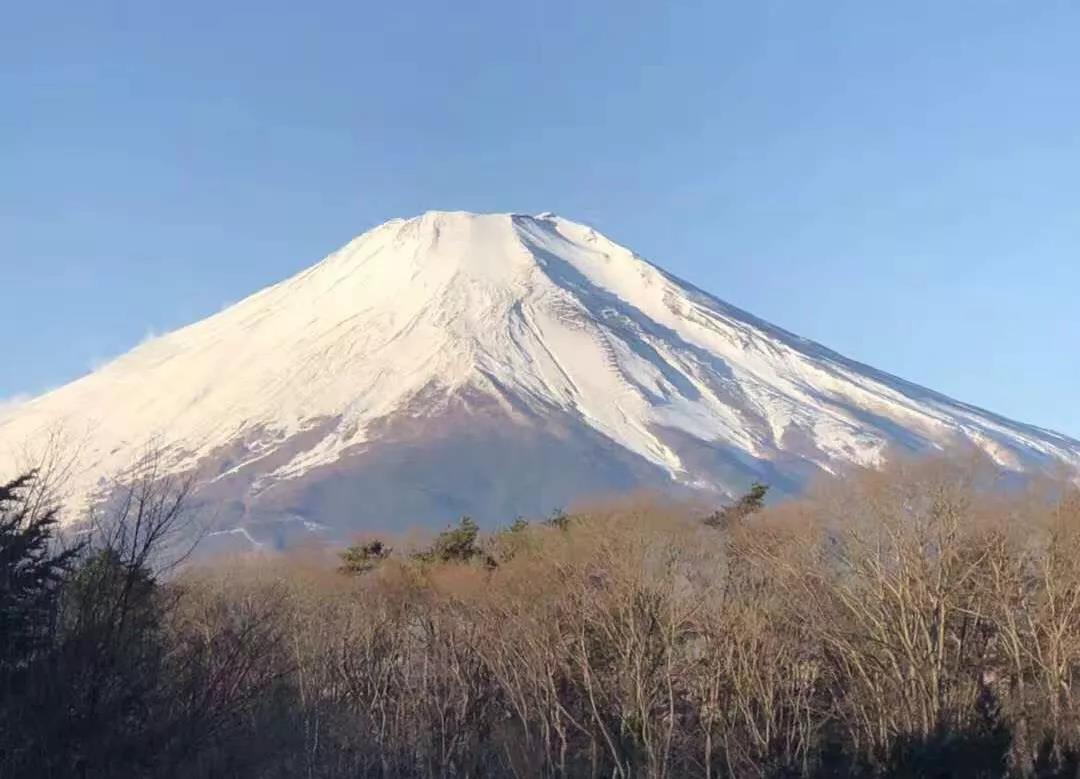 曾国藩初中31名师生日本研学之旅回眸