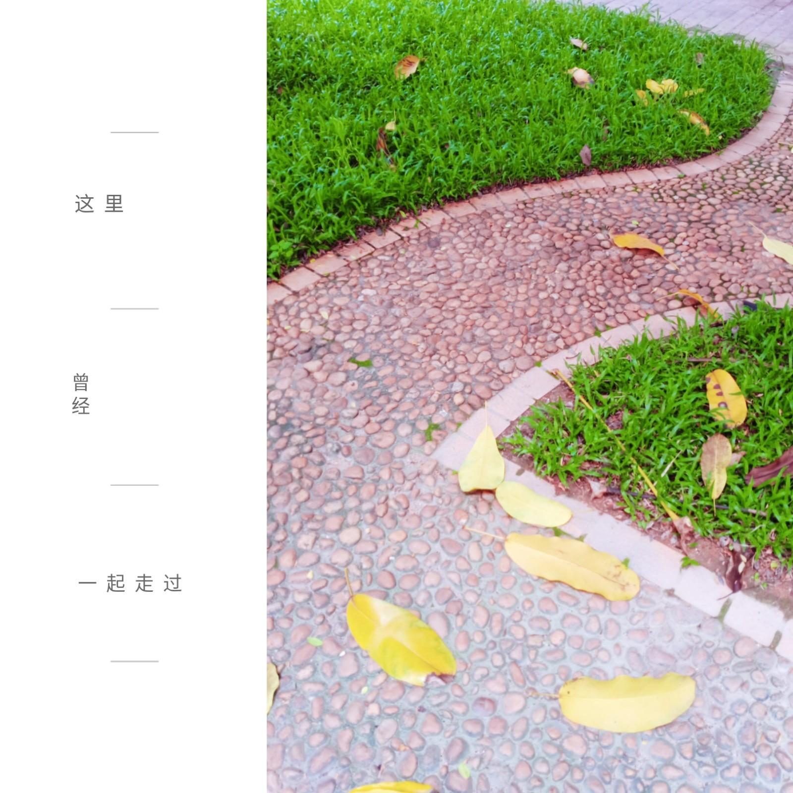 微信图片_20200419191308.jpg